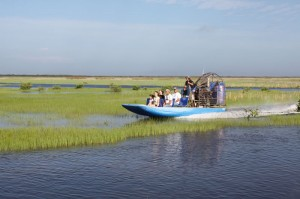 Everglades city Airboat ours