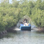 airboats eco-friendly everglades