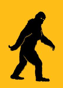 Everglades skunk ape