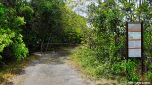 Old Ingraham Highway