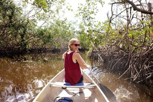 explore in everglades